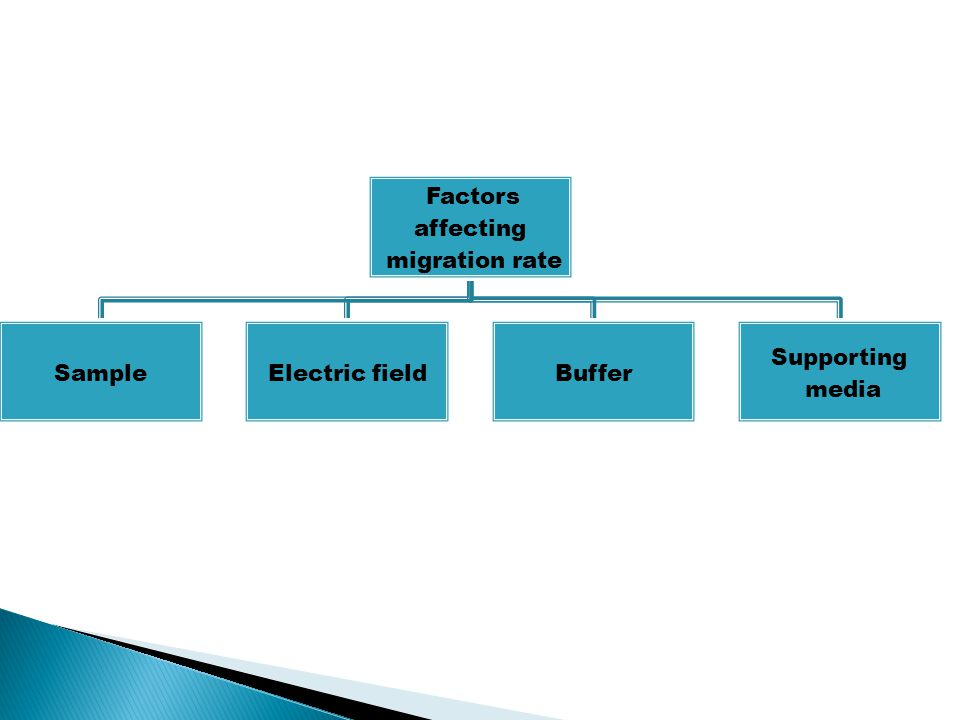 migration rate affecting Factors Sample Electric field Buffer Supporting media