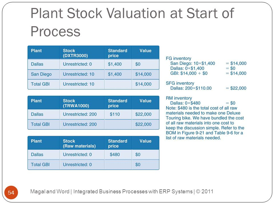 Plant Stock Valuation at Start of Process