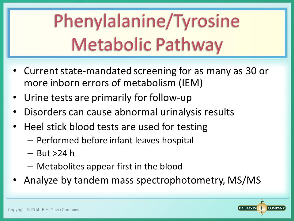 metabolic test online