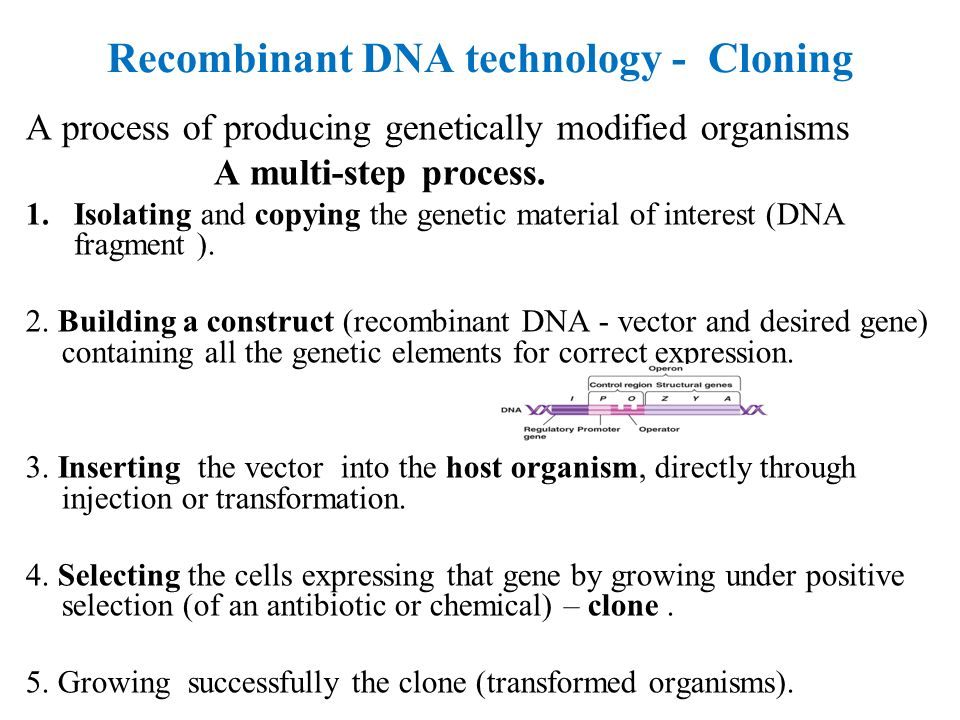 Biotechnology and Recombinant DNA ppt video online download – Recombinant Dna Worksheet