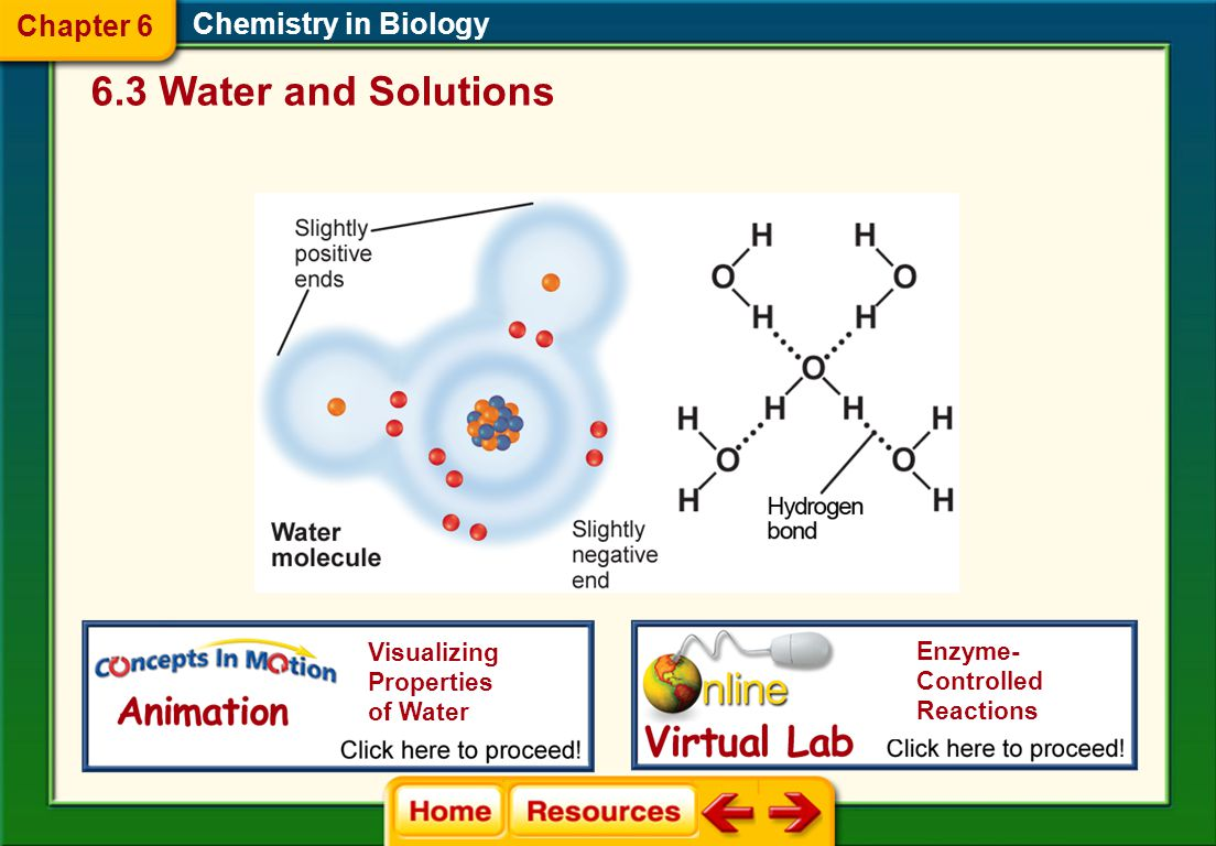 6.3 Water and Solutions Chapter 6 Chemistry in Biology