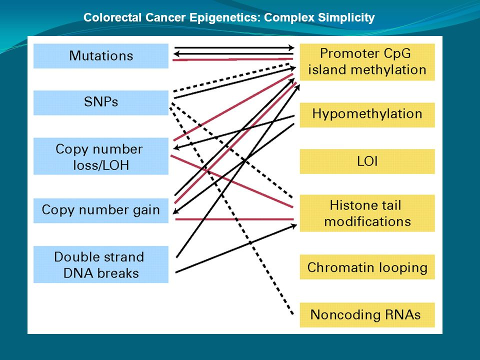 Colorectal Cancer Epigenetics: Complex Simplicity