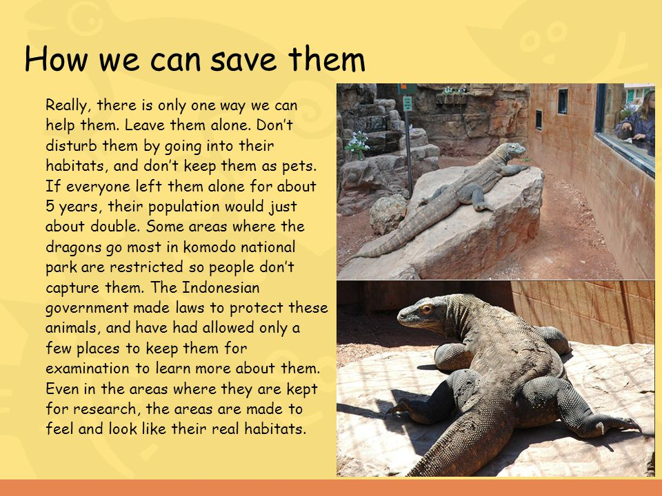 How we can save them