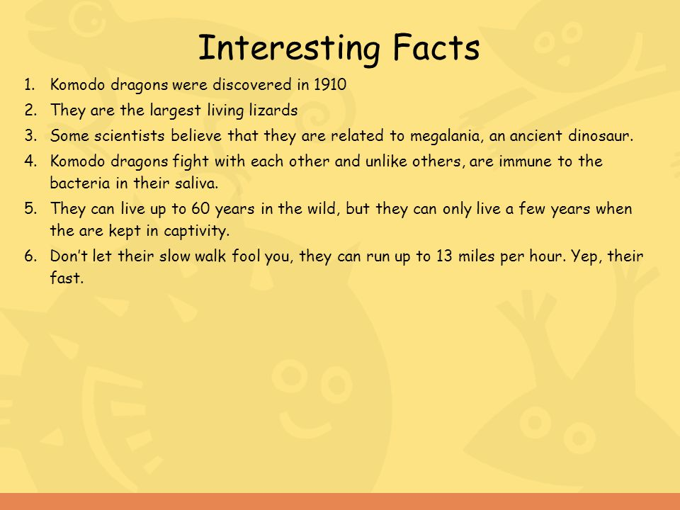 Interesting Facts Komodo dragons were discovered in 1910