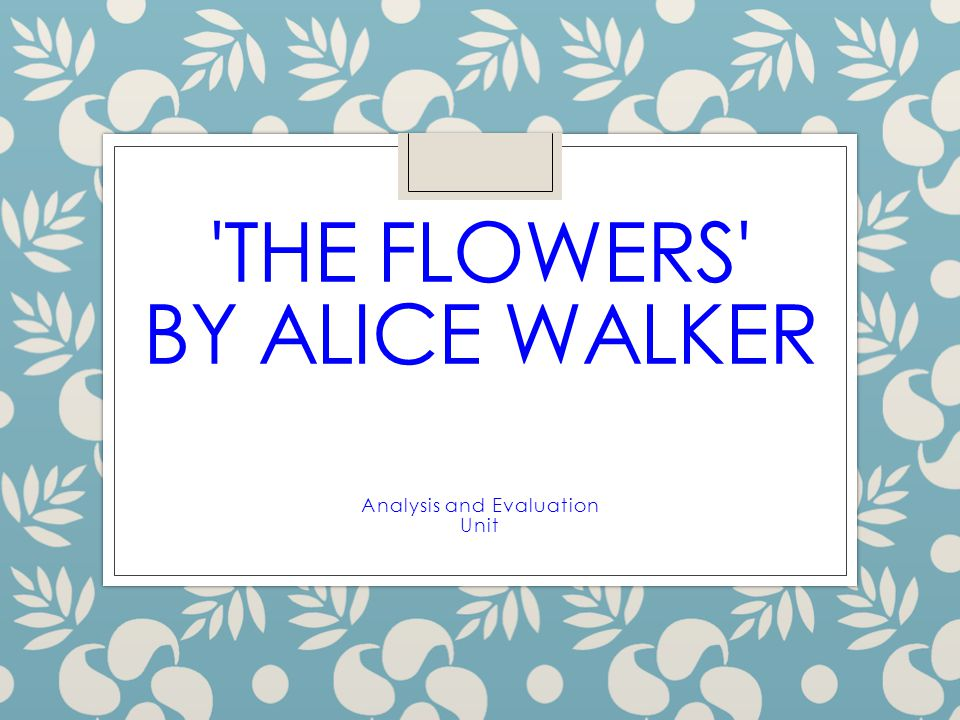 eng 125 alice walker's the welcome