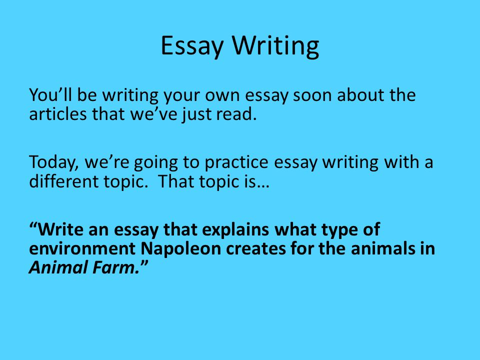 Essay Writting