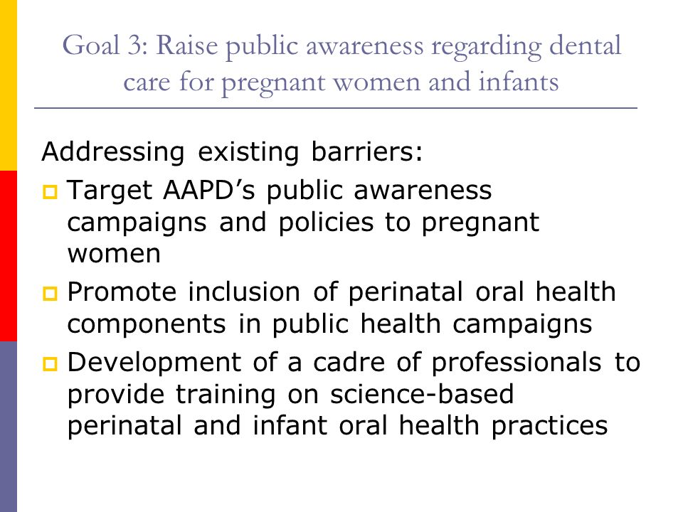 Goal 3: Raise public awareness regarding dental care for pregnant women and infants