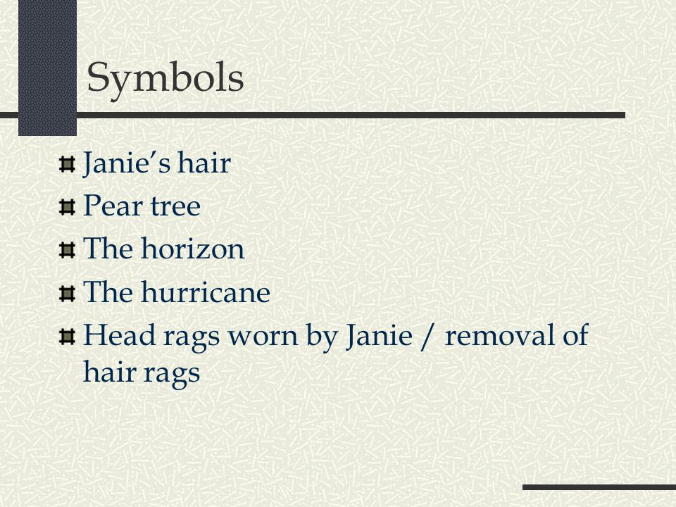 Symbols Janie's hair Pear tree The horizon The hurricane