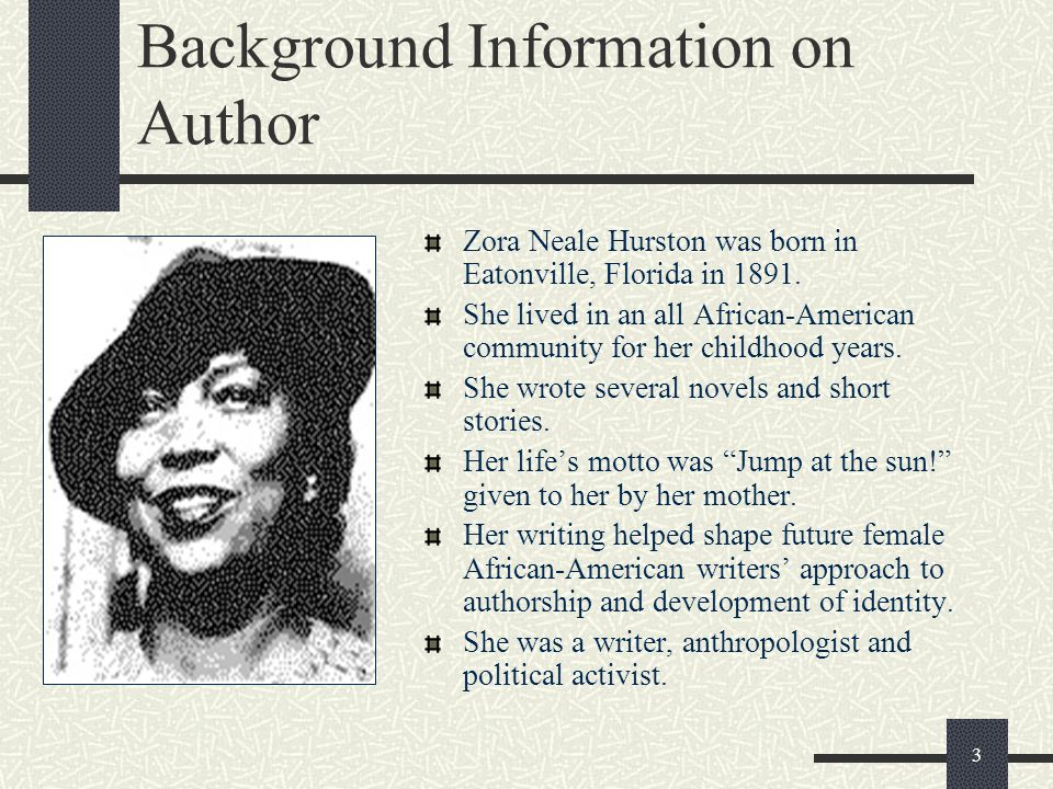 Background Information on Author