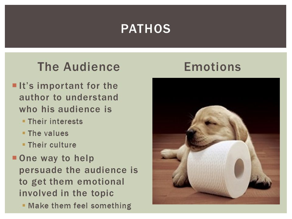 Pathos The Audience Emotions