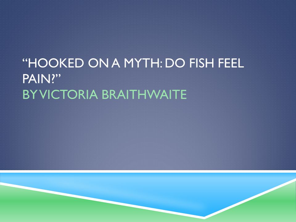 hooked on a myth do fish feel pain by victoria