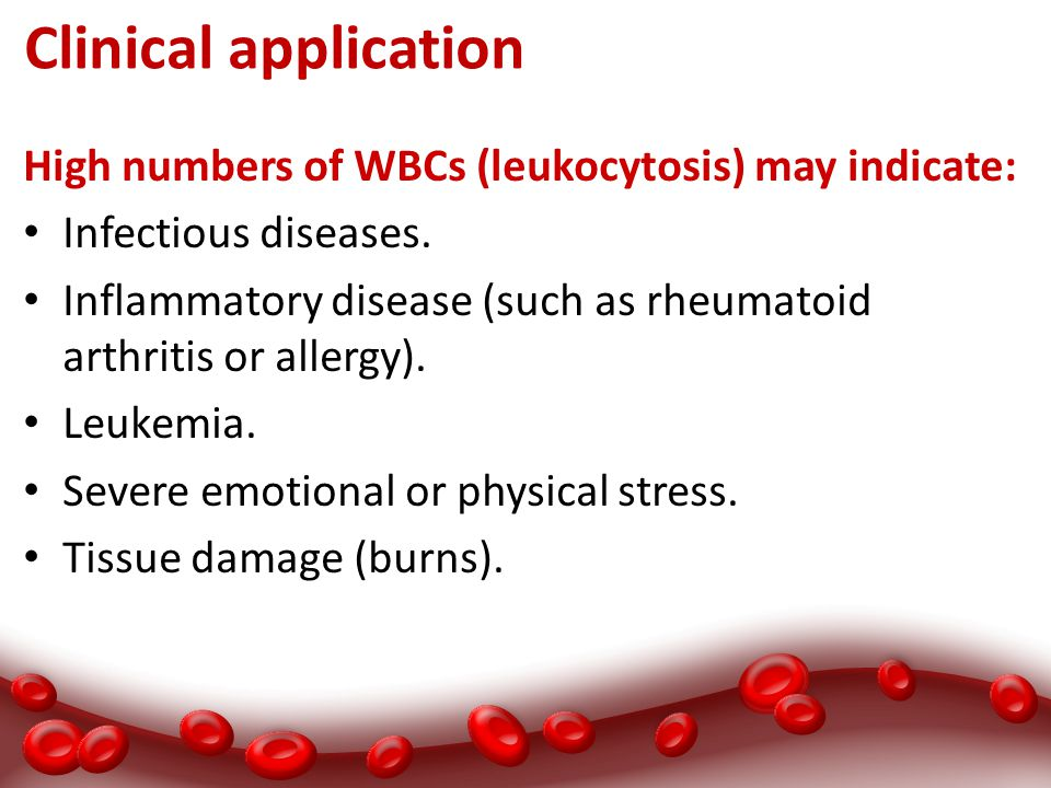 Clinical application High numbers of WBCs (leukocytosis) may indicate: