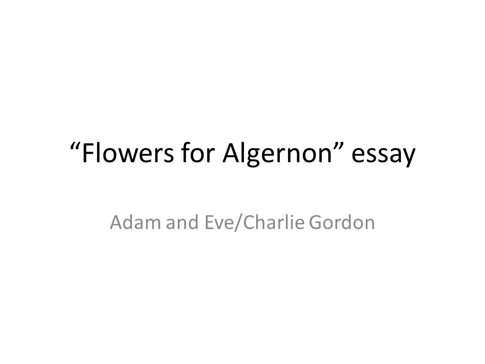 "flowers for algernon"" essay ppt video online  flowers for algernon essay"