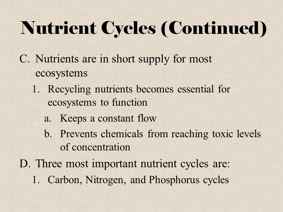 Nutrient Cycles (Continued)
