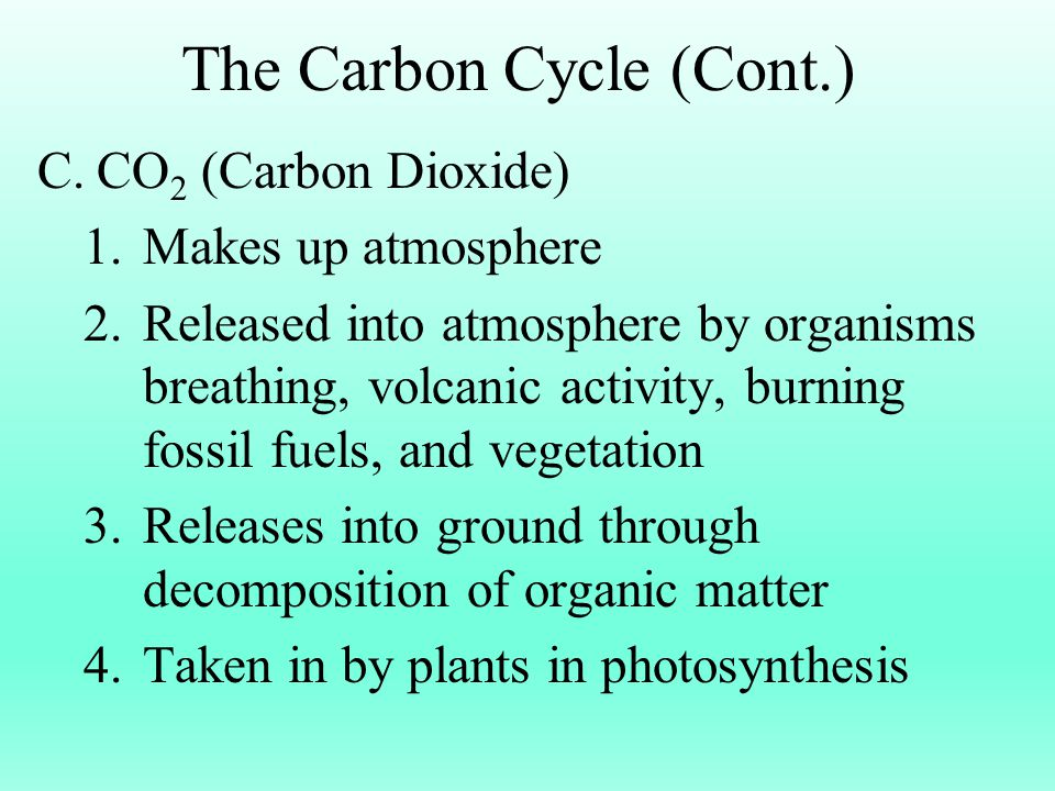 The Carbon Cycle (Cont.)