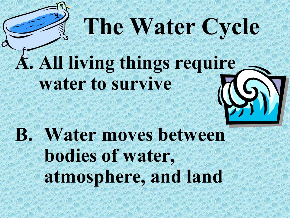 The Water Cycle All living things require water to survive