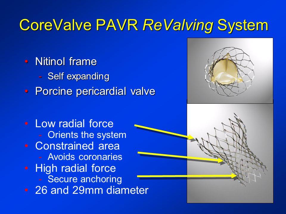 CoreValve PAVR ReValving System