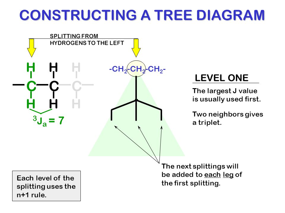 A tree diagram 51 images simple tree diagram wiring diagram a tree diagram tree diagram and or rule choice image how to guide and a tree diagram ccuart Choice Image