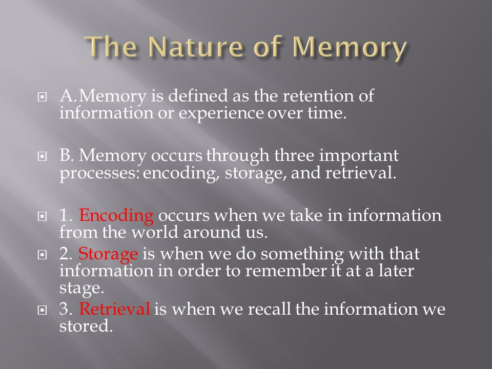 Memory (Encoding, Storage, Retrieval)