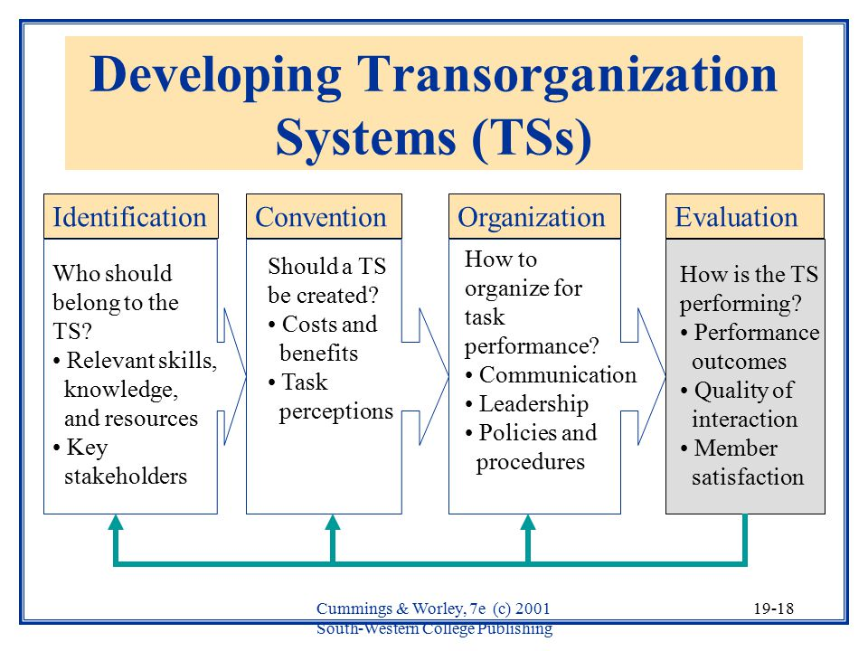 Developing Transorganization Systems (TSs)