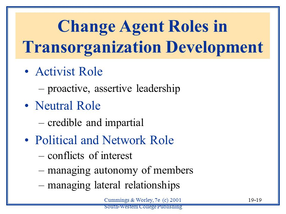 Change Agent Roles in Transorganization Development