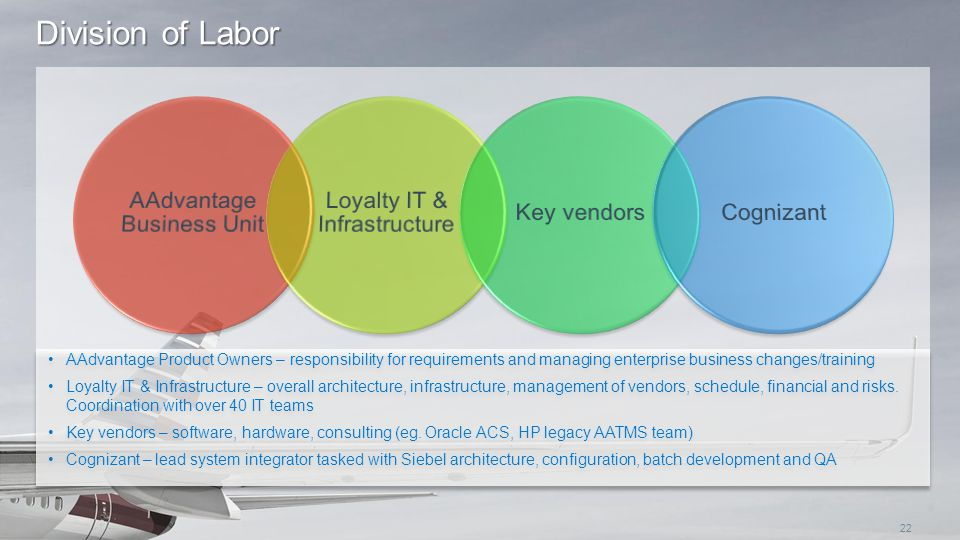 Division of Labor AAdvantage Business Unit Loyalty IT & Infrastructure