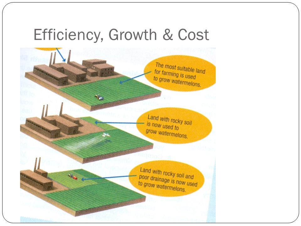 Efficiency, Growth & Cost