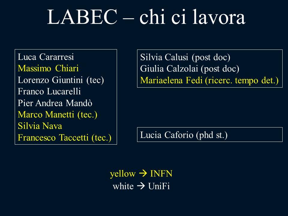 LABEC – chi ci lavora Luca Cararresi Silvia Calusi (post doc)
