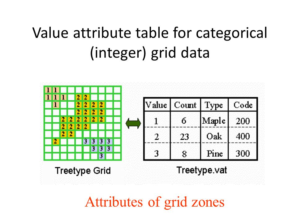 Spatial analysis using grids ppt download for Table attributes