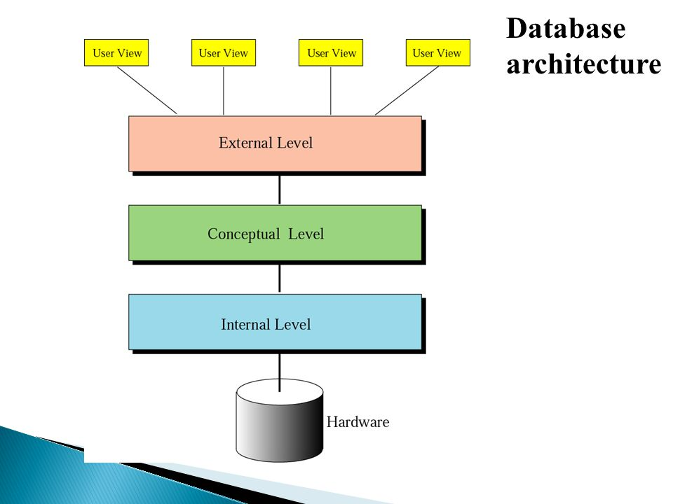 Introduction To Database Management System Ppt Video