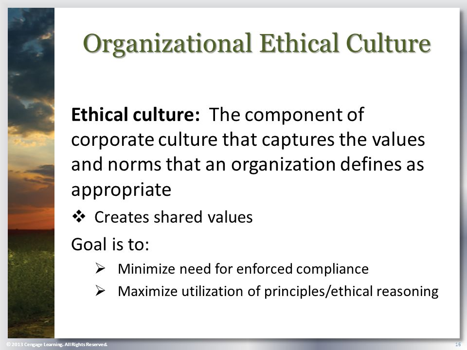 Organizational Goals And Ethical Principles