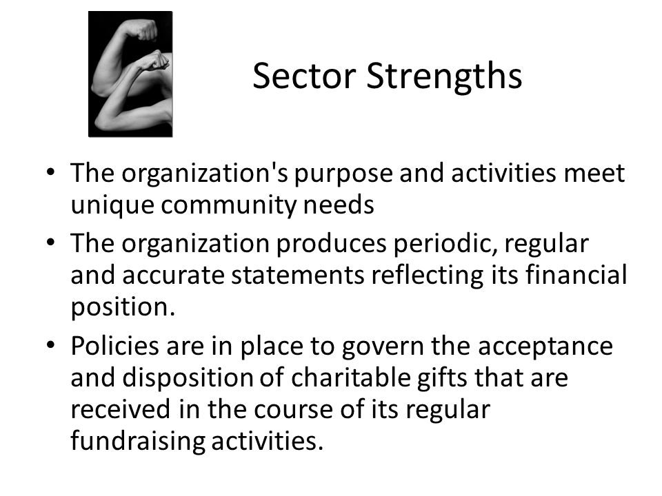 Sector Strengths The organization s purpose and activities meet unique community needs.