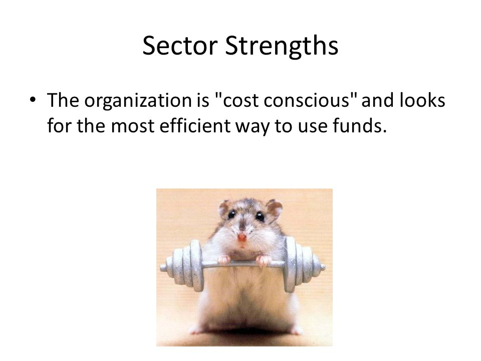 Sector Strengths The organization is cost conscious and looks for the most efficient way to use funds.