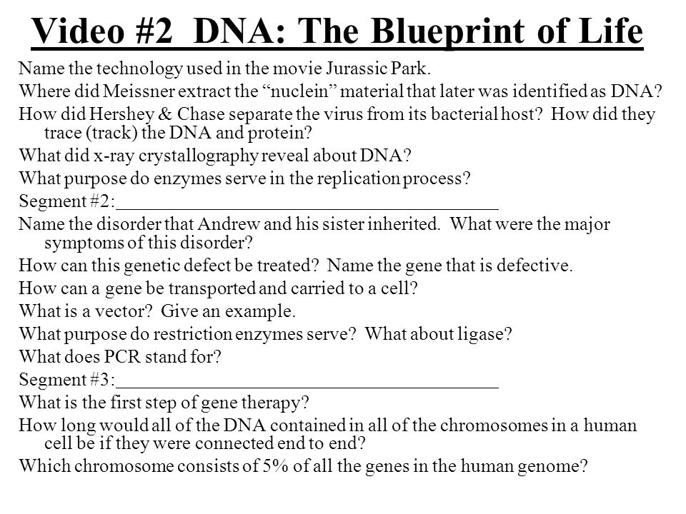 Video 2 dna the blueprint of life ppt video online download video 2 dna the blueprint of life malvernweather Gallery