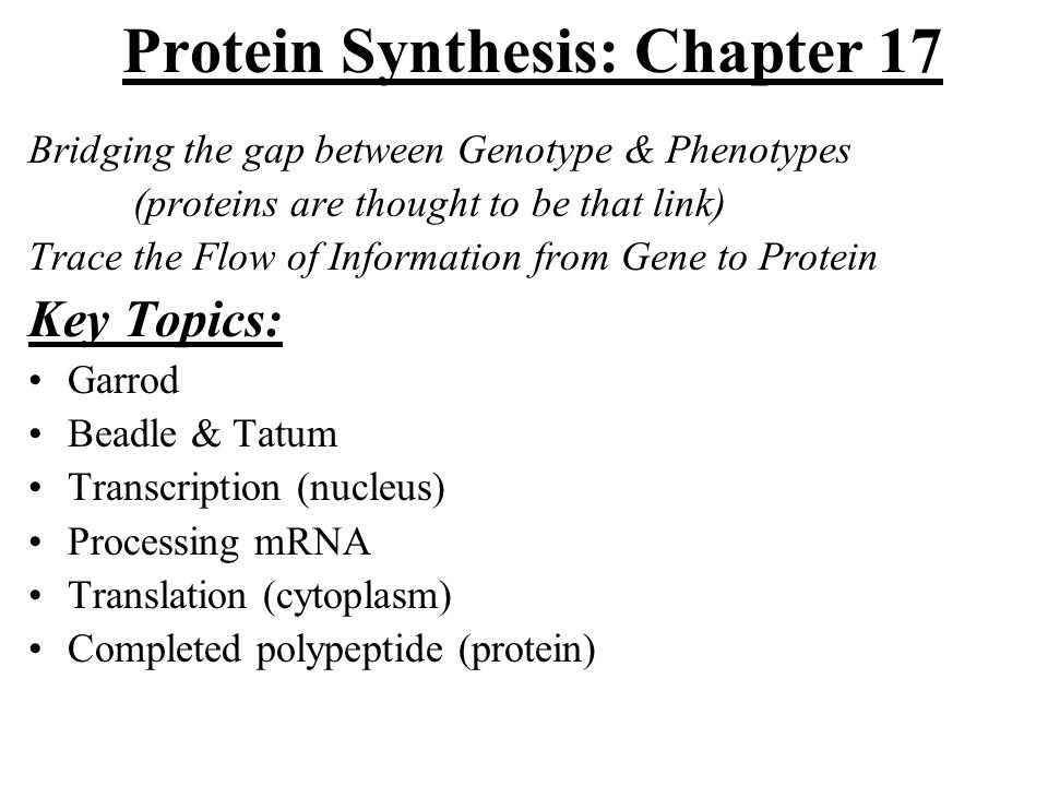 Video 2 dna the blueprint of life ppt video online download 2 protein malvernweather Choice Image