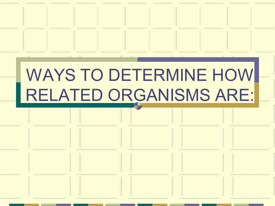 WAYS TO DETERMINE HOW RELATED ORGANISMS ARE:
