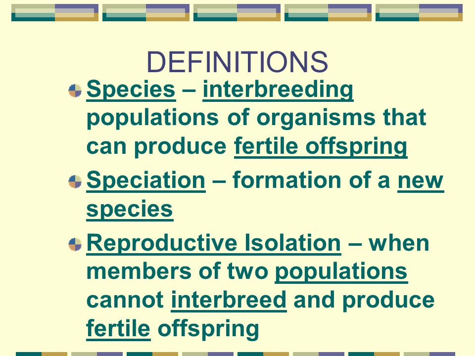 DEFINITIONS Species – interbreeding populations of organisms that can produce fertile offspring. Speciation – formation of a new species.