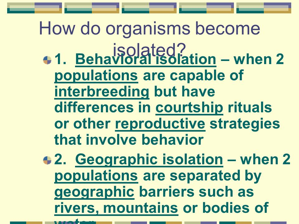 How do organisms become isolated