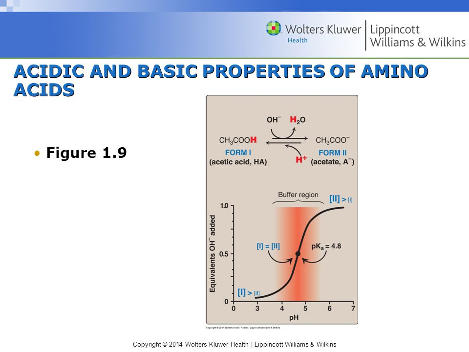 ACIDIC AND BASIC PROPERTIES OF AMINO ACIDS