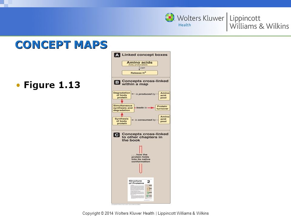 CONCEPT MAPS Figure 1.13 Symbols used in concept maps.
