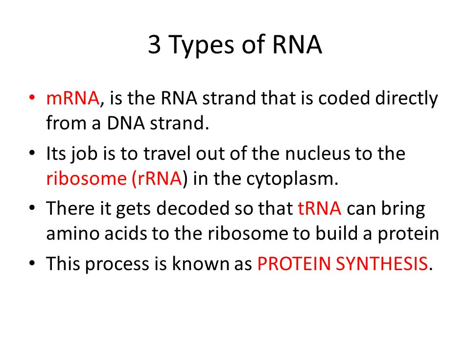 3 Types of RNA mRNA, is the RNA strand that is coded directly from a DNA strand.