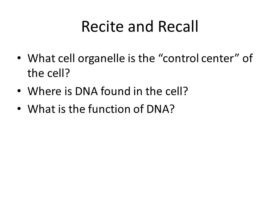 Recite and Recall What cell organelle is the control center of the cell Where is DNA found in the cell