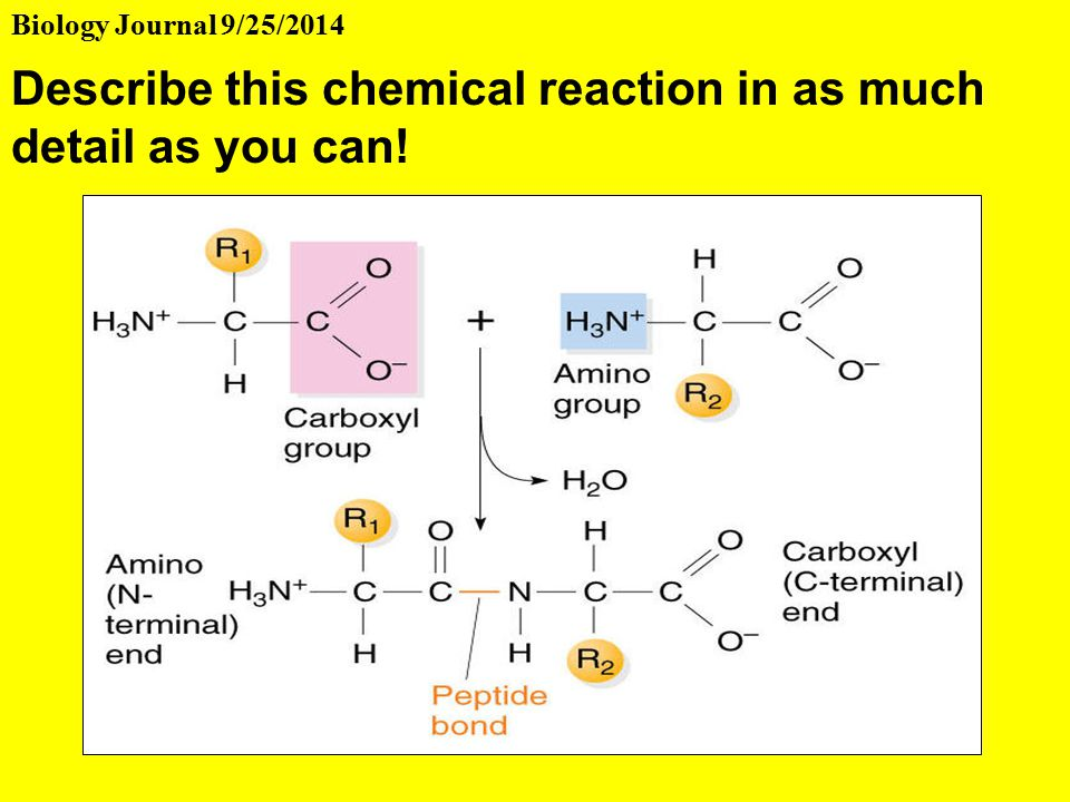 ti chemical reaction in automobiles Up to ti-83/84 plus basic a table which shows the evolution of the amount of substance of the reagent and the products of a chemical reaction in.