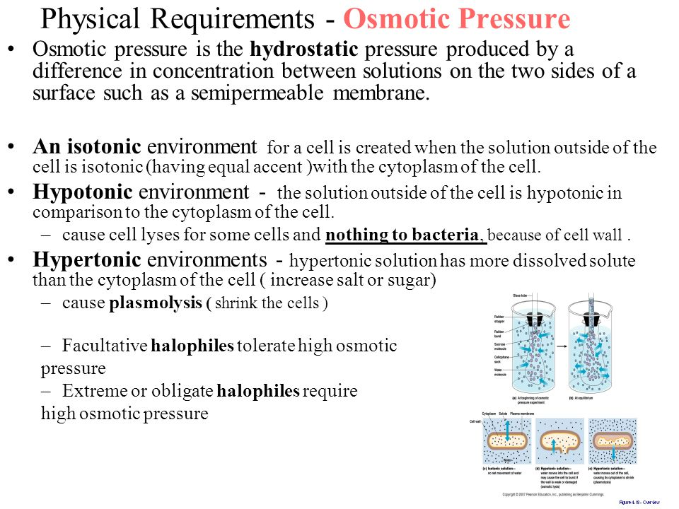 Physical Requirements - Osmotic Pressure