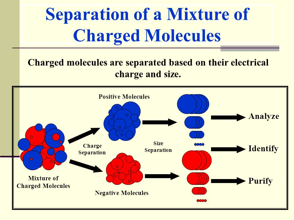 Separation of a Mixture of Charged Molecules