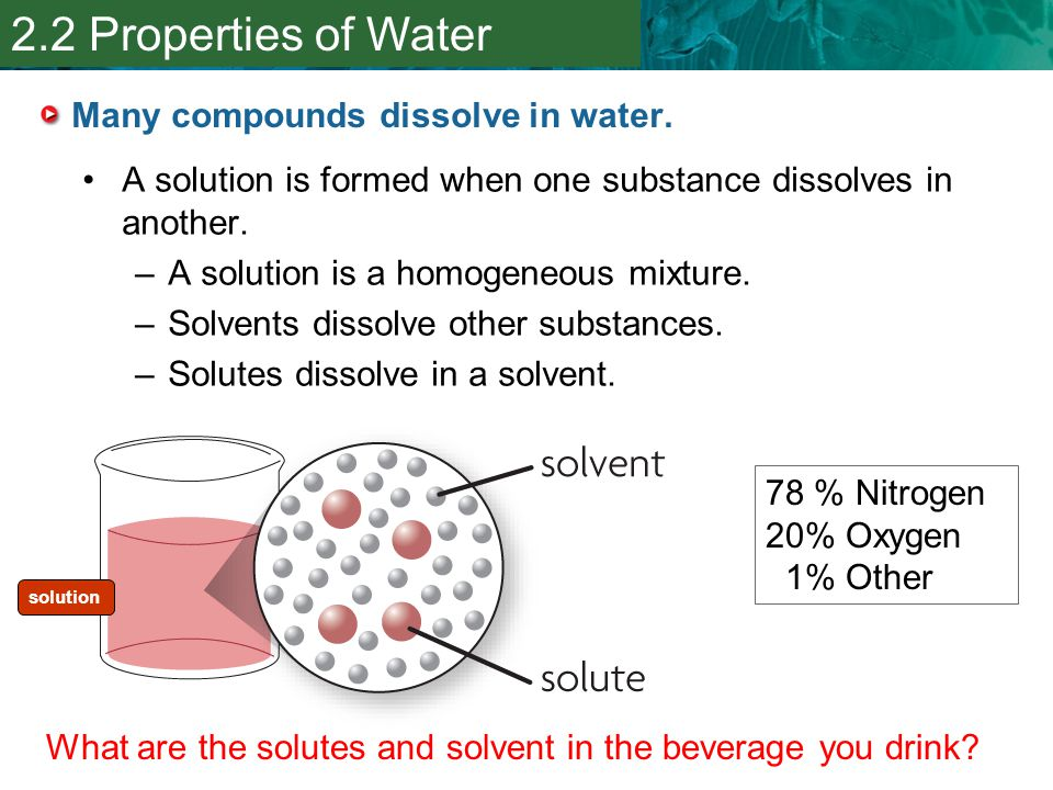 Many compounds dissolve in water.