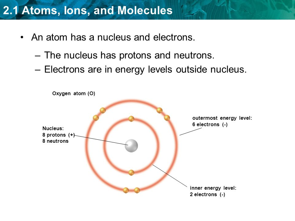 An atom has a nucleus and electrons.