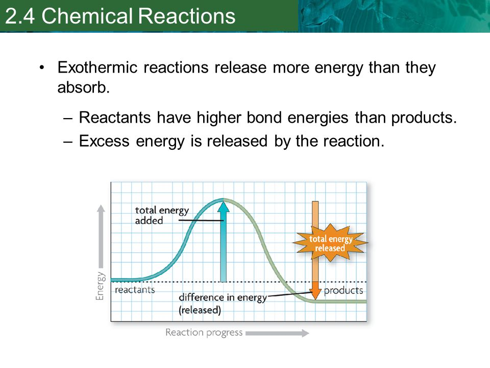 2.4 Chemical Reactions Exothermic reactions release more energy than they absorb. Reactants have higher bond energies than products.