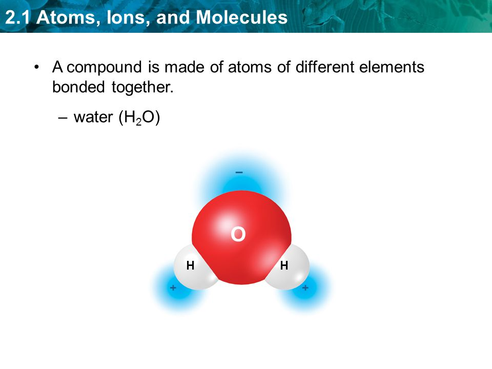 O A compound is made of atoms of different elements bonded together.