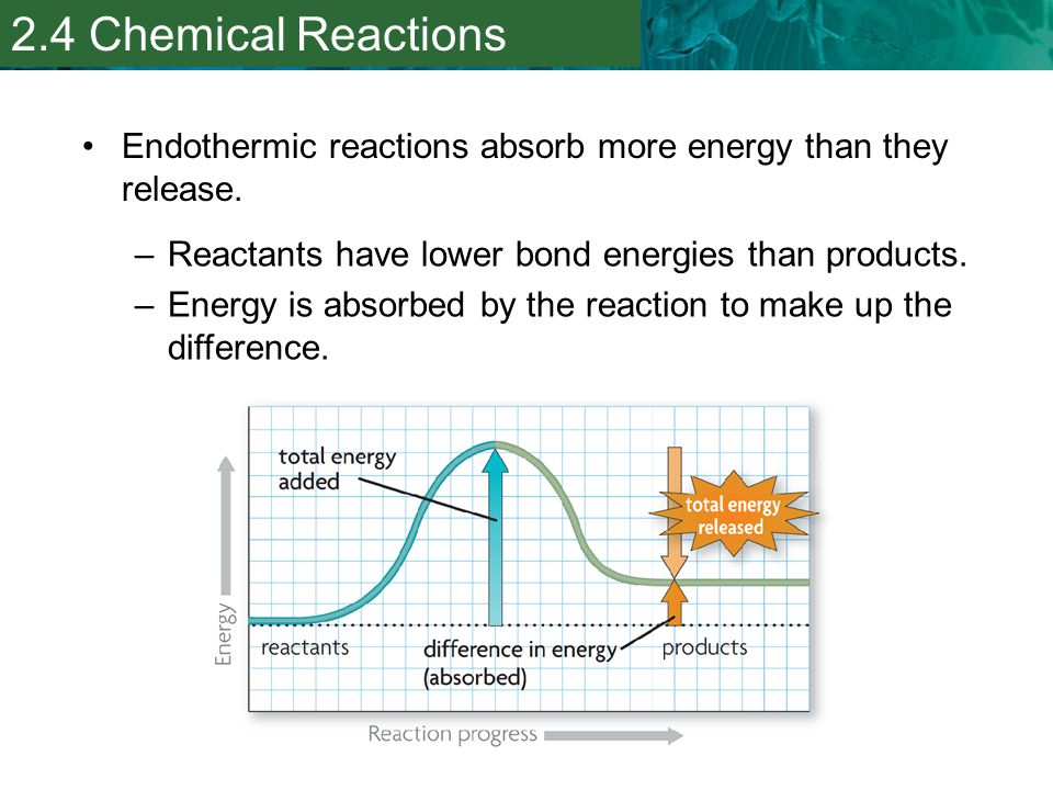 2.4 Chemical Reactions Endothermic reactions absorb more energy than they release. Reactants have lower bond energies than products.